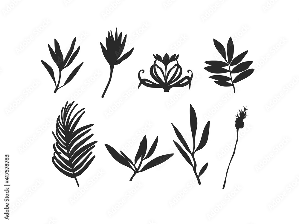 Fototapeta Hand drawn vector abstract stock flat graphic illustration collection set with logo elements of branch leaves silhouettes art in simple style for branding,isolated on white background