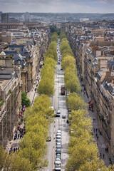 View from the Arc de Triomphe. Paris. France