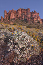 USA, Arizona. Flat Iron Peak, Superstition Mountains.