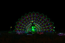 Peacock Chinese Lantern On A Dark Background