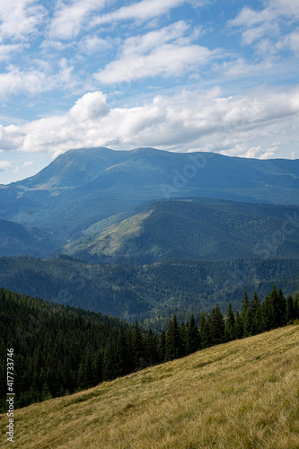Vertical shot of a field with forested mountains in the background #417733746