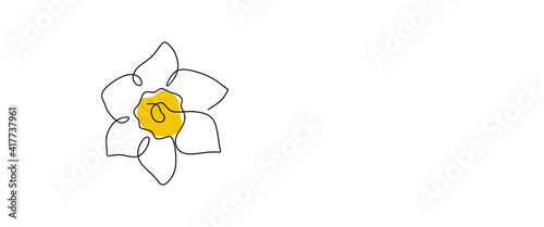 Fotografie, Obraz Daffodil flower in yellow color continuous line drawing