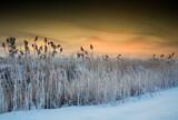 Zimowy Krajobraz O Brzasku  Nad Rzeką