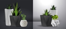 House Plants Realistic White Wall Interior. Vector Illustration. Set Of Decorative Houseplants To Decorate The Interior Of A House Or Apartment.