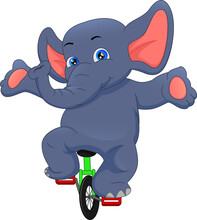 Cute Elephant Riding A Bicycle