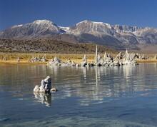 Calcium Carbonate Tufas, Mono Lake, California, USA, North America