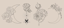 Flowers And The Moon In Line Style For Tattoo, Minimalist Design Cosmetics Store, Jewelry Handmade, Beauty Salon, Spa, Print On Clothes, Delicate Nude Color