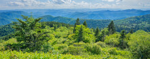 A Panoramic View Of The Smoky Mountains From The Blue Ridge Parkway In North Carolina. Layers Of Green Hills And Mountains. North Carolina. Image For Banner And Web Header.