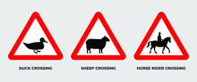 Set Of Triangle Of Warning Animal Cross Of Road Signs Vector Template. Isolated An Object. Eps 10