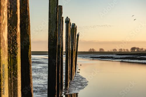 Fotografija Small empty harbor near Emden in Germany