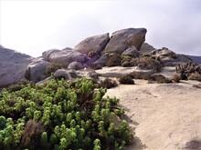Large Rocks And Green Vegetation