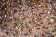 Aerial View Of People Feeding Animals At Goru Hate, A Cattle Selling Point In Sherpur, Rajshahi Province, Bangladesh.