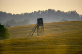 Fototapeta Krajobraz - pejzaż polny