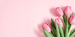 Beautiful pink tulips on pastel pink background. Concept Women's Day, March 8. 8th march. Spring background. Flat lay, top view, copy space