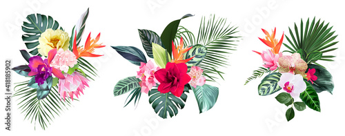 Canvas Print Exotic tropical flowers, orchid, strelitzia, hibiscus, protea, anthurium, palm