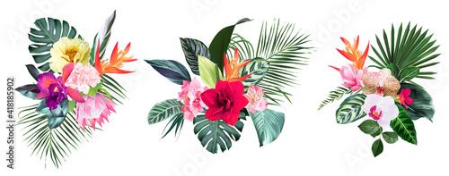Tablou Canvas Exotic tropical flowers, orchid, strelitzia, hibiscus, protea, anthurium, palm