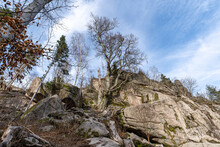 Low Angle Shot Of Trees And Rock Formations On A Mountain Hillside
