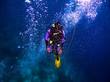 Closeup Shot Of A Professional Scuba Diver Diving Underwater