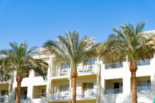 View At Palm Trees At Egypt Resort, Building With Balconies, Clear Sky.