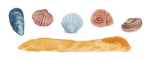 A Set Of Hand-painted Watercolor Seashells Of Different Shapes And Colors And A Sandy Bottom Isolated On A White Background. Illustration Of Underwater Objects. Design Clipart Elements