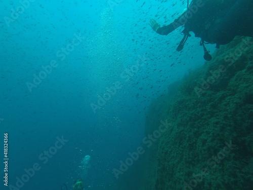 Canvas Print Scuba diving at Cap dramont