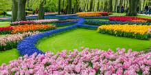 Blooming Flowers In Spring Formal Garden.