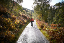 Male Mountain Biker Biking On Rural Road, Rear View,  Achnasheen, Scottish Highlands, Scotland
