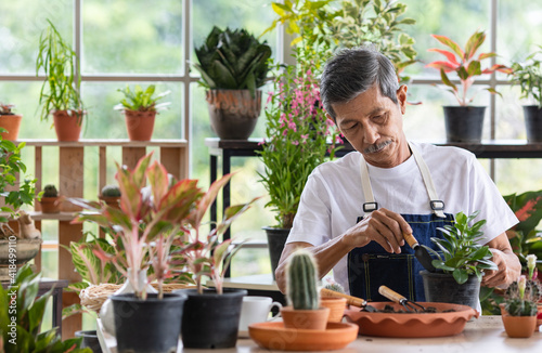 Valokuva A senior Asian man working in a planting hobby room with happiness and concentrait