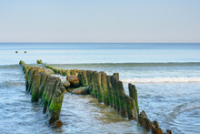 Old Row Of Wooden Piles Breakwater In Sea. Green Algae And Soft Wave. Beautiful Seascape