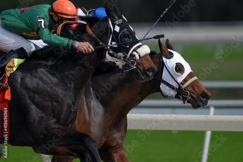 HORSE RACING Fototapet