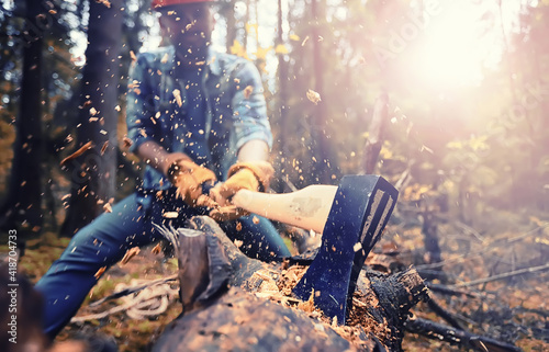 Male worker with an ax chopping a tree in the forest. Fototapeta