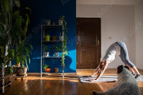 Slika na platnu woman with dog doing yoga at home houseplants in background
