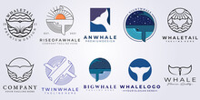 Bundle Whale Tail Set Logo Vector Illustration Design
