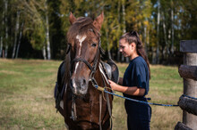 The Process Of Saddling A Horse Is Demonstrated By A Young Instructor A Girl In Equestrian Sports.