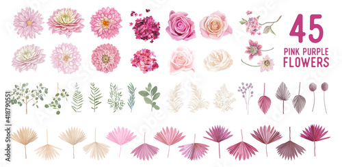 Dried pampas grass, dahlia, rose flowers, tropical palm leaves vector bouquets Poster Mural XXL
