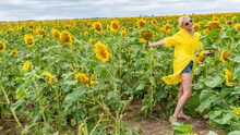 In A Yellow Dress A Young With A Charismatic Appearance Against The Background Of A Field With Sunflowers With Blue Clouds During The Day And In Summer