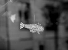 Hängender Fisch Im Schaufenster