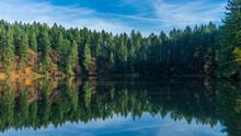 LaCamas Creek Loop And Lake, Camas, Washington