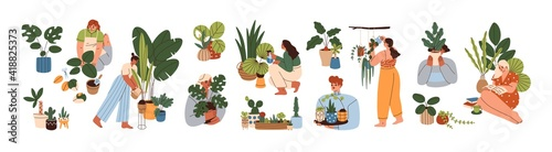 Obraz Set of happy women caring about interior potted plants isolated on white background. Home gardening and growing houseplants. Colored flat vector illustration of trendy people with house greenery - fototapety do salonu