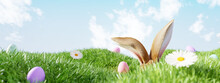 Easter Landscape, Rabbit Ear With Colorful Eggs And Daisy Flower On Meadow Under Beautiful Sky. 3d Rendering