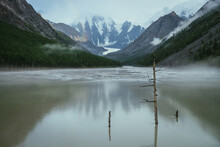 Atmospheric Alpine Landscape With Dry Tree In Green Water Of Mountain Lake From Snowy Mountains In Overcast Weather. Gloomy Scenery With Green Lake With Rainy Circles And Low Clouds In Mountain Valley