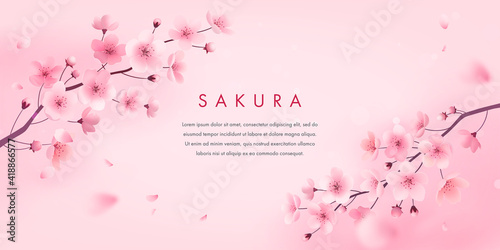 Fotomural Spring cherry blossom horizontal banner