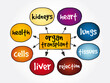 Organ Transplant mind map, medical concept for presentations and reports