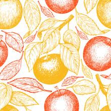 Apple Branch Seamless Pattern. Hand Drawn Vector Garden Fruit Illustration. Engraved Style Fruit Retro Botanical Banner.