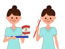 【虫歯予防】歯科助手歯磨き指導(歯ブラシ、白衣、歯磨き粉、舌磨き、歯磨き指導)