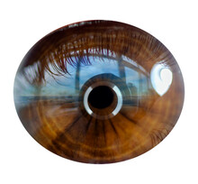 Brown Eye Pupil  Macro Photo. Blue Seascape Reflected In The Pupil
