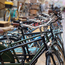 Bicycle Shop, Rows Of New Bicycles