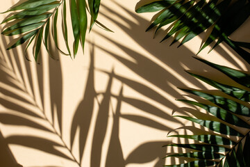 Abstract background of fresh palm leaves and shadows on the beige wall