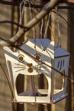 Bird Feeder In The Garden, Spring Time