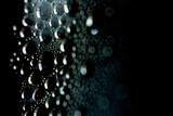 Krople wody _Water drops